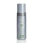 SkinMedica Purifying Foaming Wash (5 oz.) (ACNE)