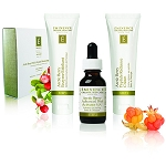 Eminence Organics Arctic Berry Peel and Peptide Illuminating System (3 piece)